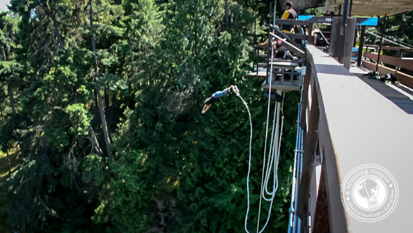 Would You Do It? Conquering Fears and Bungee Jumping in British Columbia