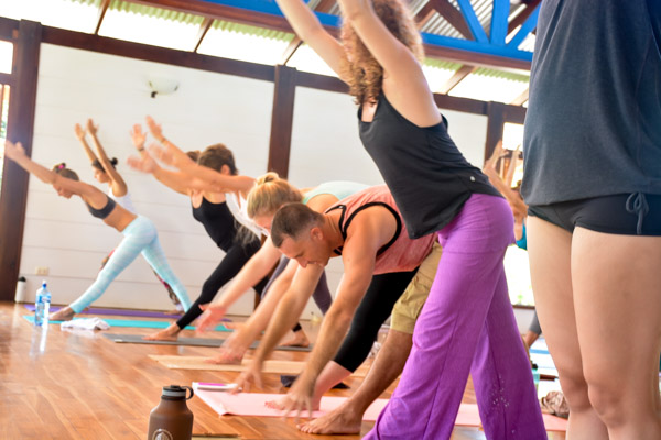 Updates from Blue Osa: The First 24 Hours of Yoga Teacher Training