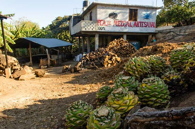 An Inside Look At The Art Of Making Mezcal